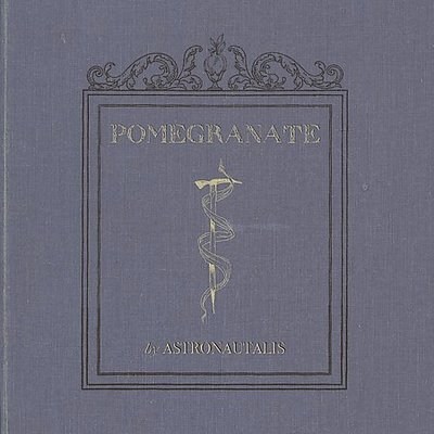 Astronautalis - Pomegranate